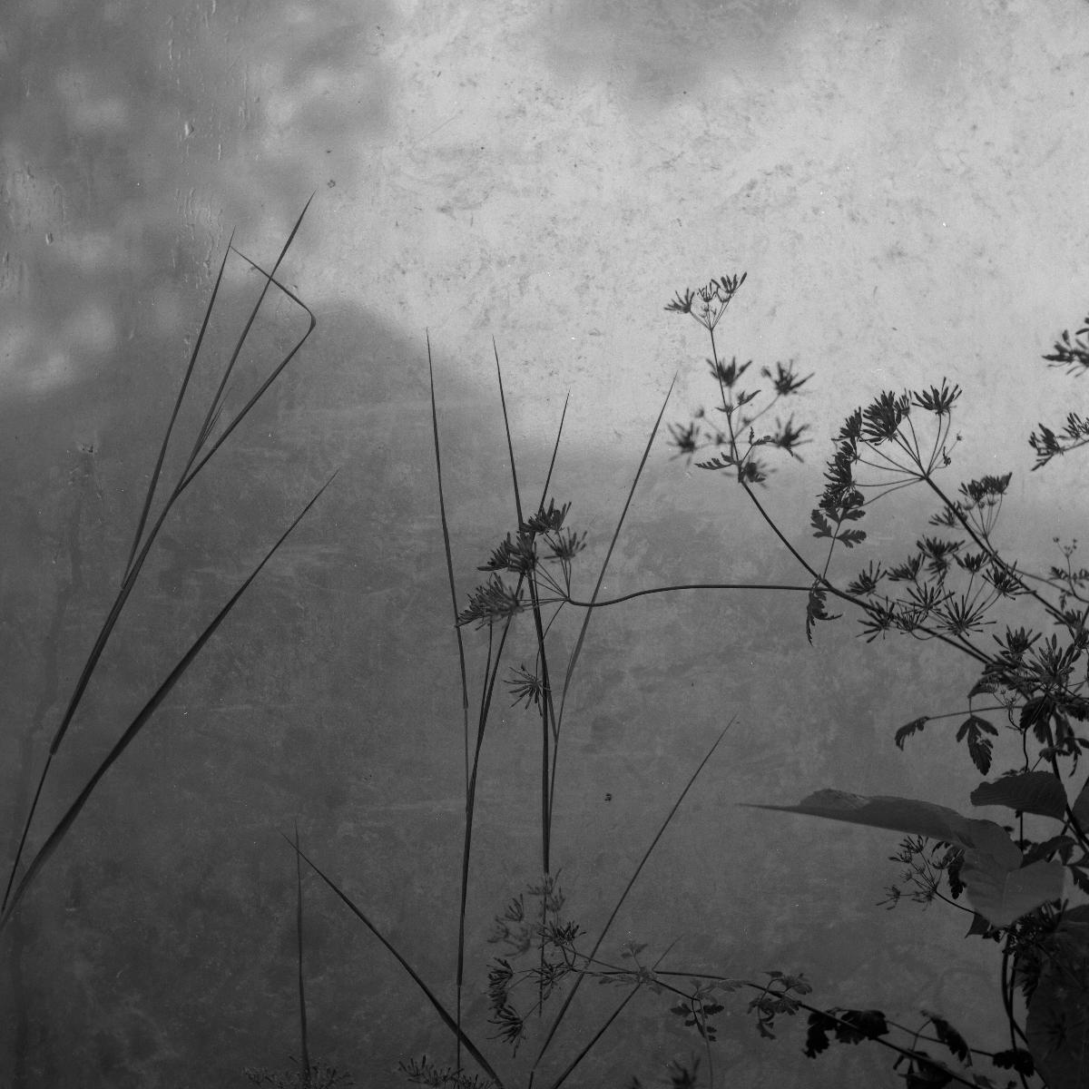 le-phaux-film-4-009