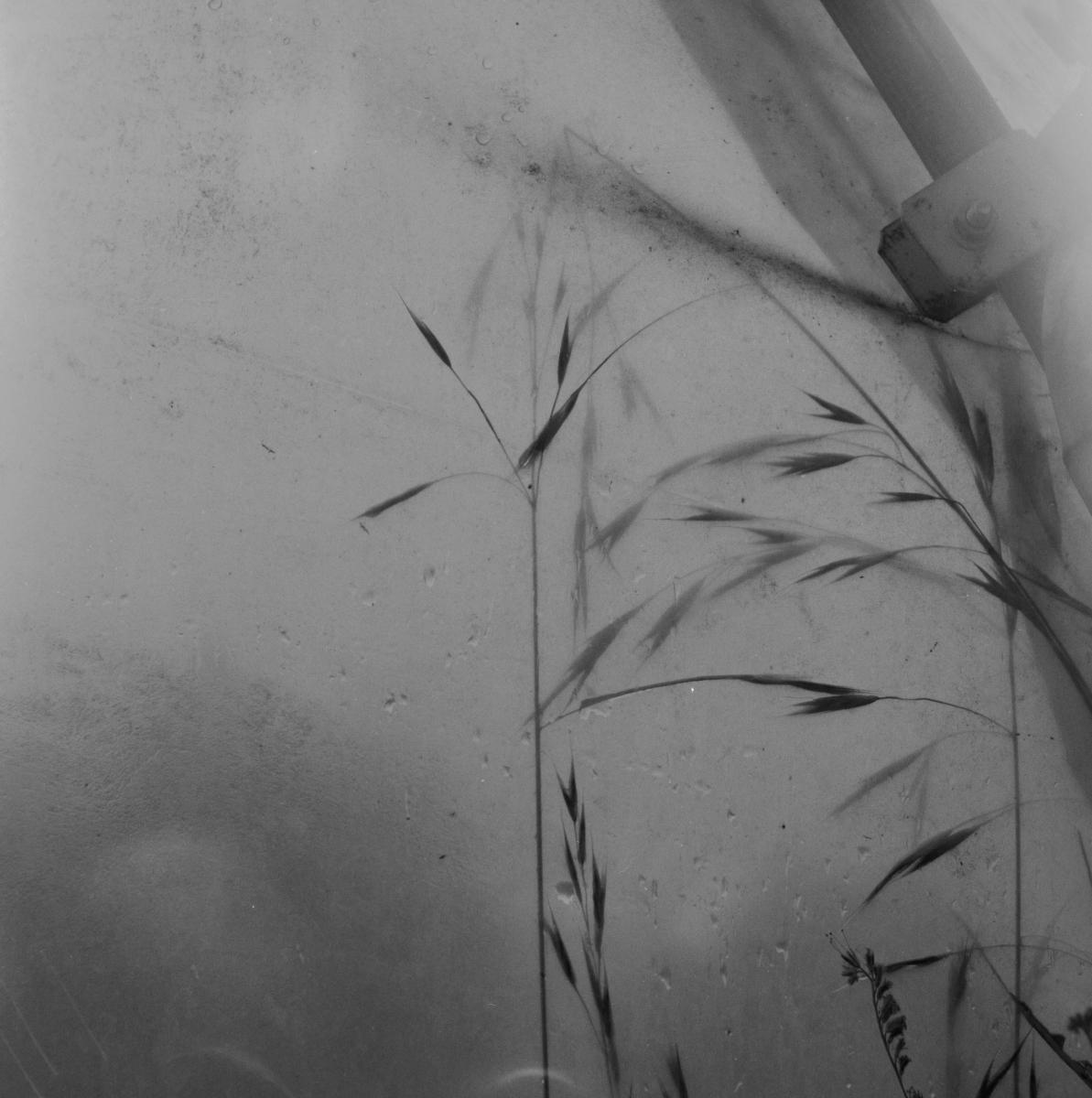 le-phaux-film-4-012