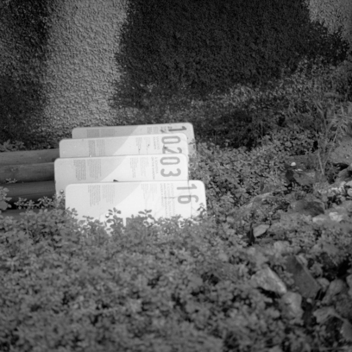 6x6-lisabon-2012-011